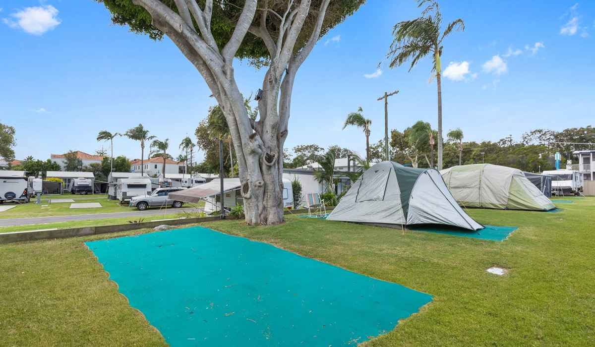 Camping sites with green mats